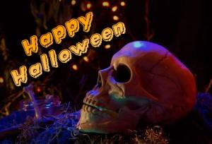 Happy Halloween - valomorris.com 2014